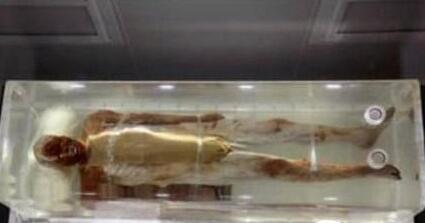 古代第一美男潘安容貌复原图 潘安古尸容貌复原图