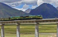 2005年绿色怪物杀死青藏铁路工人事件 绿血怪物真假