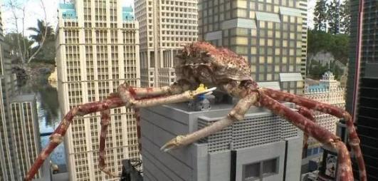 英国现15米巨型杀人蟹 潜伏岸边袭击幼儿