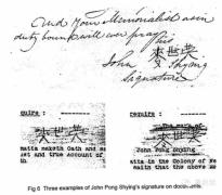 华人在澳洲移民的历史故事:中国移民澳大利亚的历史是怎样的?