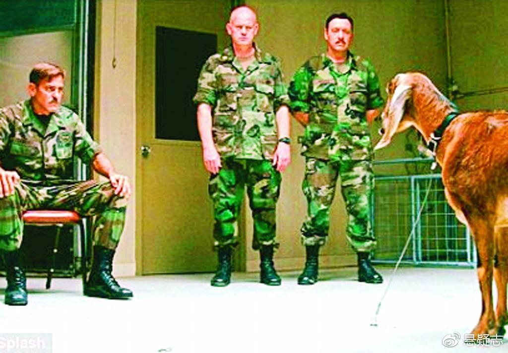 电影《凝视山羊的人》中,一名士兵和山羊对视,试图杀死山羊