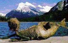 美人鱼是黑鳞鲛人?还是是把哺乳类动物儒艮和海牛误看做人形